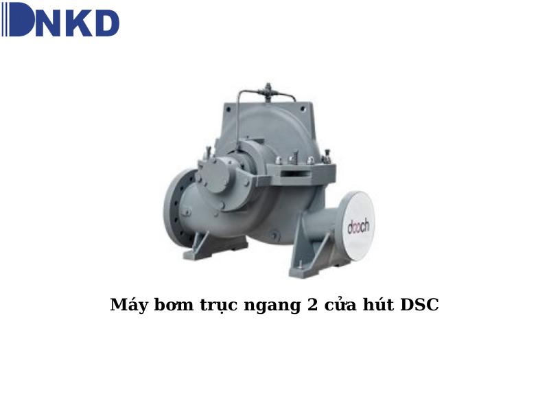 Máy bơm trục ngang 2 cửa hút DSC